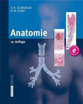 Anatomie: Histologie, Entwicklungsgeschichte, makroskopische und mikroskopische Anatomie, Topographie -