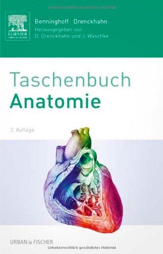 Benninghoff Taschenbuch Anatomie -