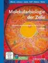 Molekularbiologie der Zelle -