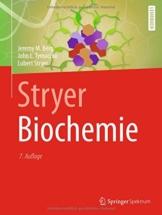 Stryer Biochemie -